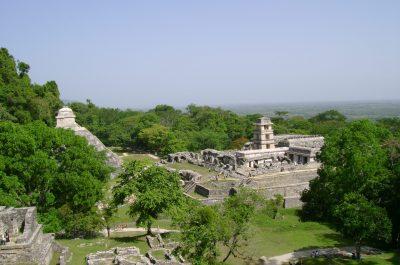 Parque-Nacional-de-Palenque-CODICE